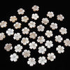 [Video] High Quality Pink Shell AAA Flower 15mm Central Hole 2pcs