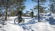 Guided tour - Scenic electric fatbike for beginners - Finland