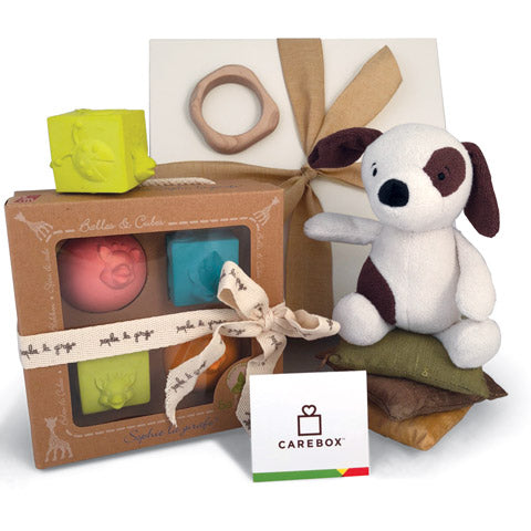Jelly Cat Puppy Toy, colorful rubber building blocks, wooden teether