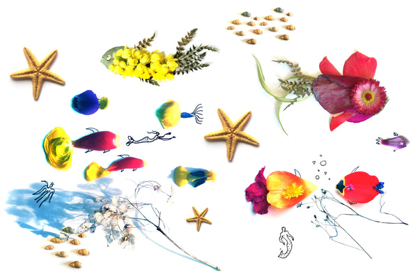 seascape illustration, yellow fish, red fish, starfish. blue fish
