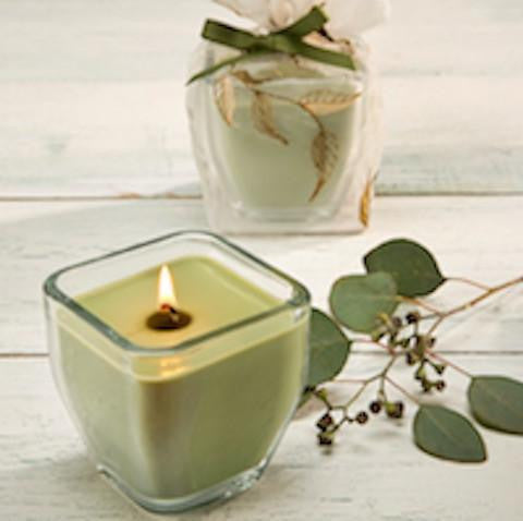 Holiday GIft - Eucalyptus Soy Candle