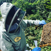 Beekeeping Workshops - London