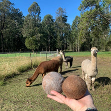 Load image into Gallery viewer, Collombatti naturals alpaca dryer balls