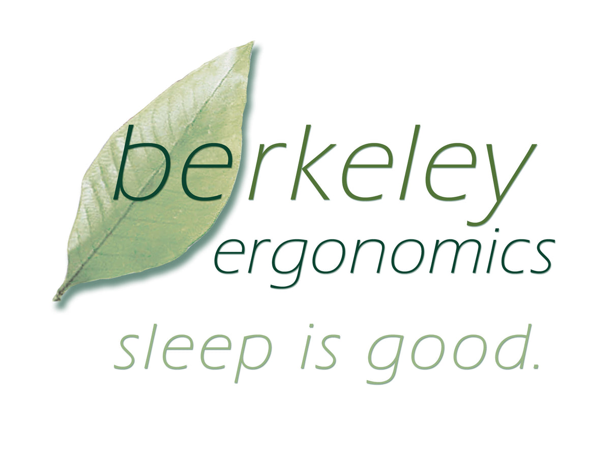 Berkeley Ergonomics Wood Slat Foundation