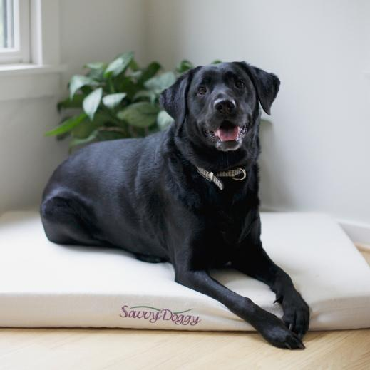 Savvy Rest Organic Pet Bed Large Dog