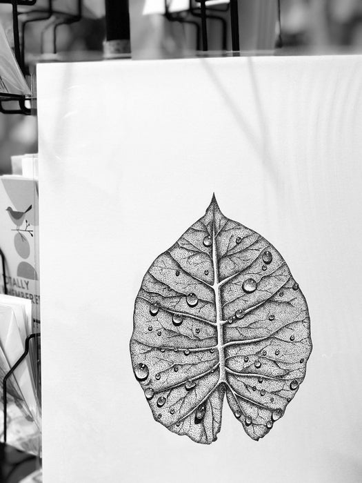 Botanica Art Prints - A3 Monochrome Leaf with Raindrops