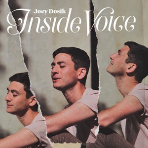 JOEY DOSIK - INSIDE VOICES Vinyl LP
