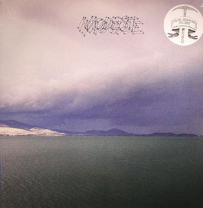 MODEST MOUSE - FRUIT THAT ATE ITSELF LP