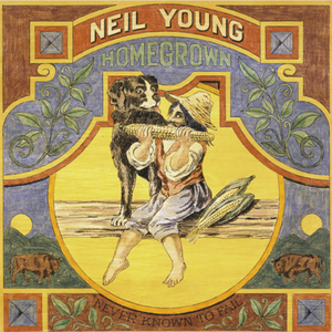 NEIL YOUNG - NEVER KNOWN TO FAIL Vinyl LP