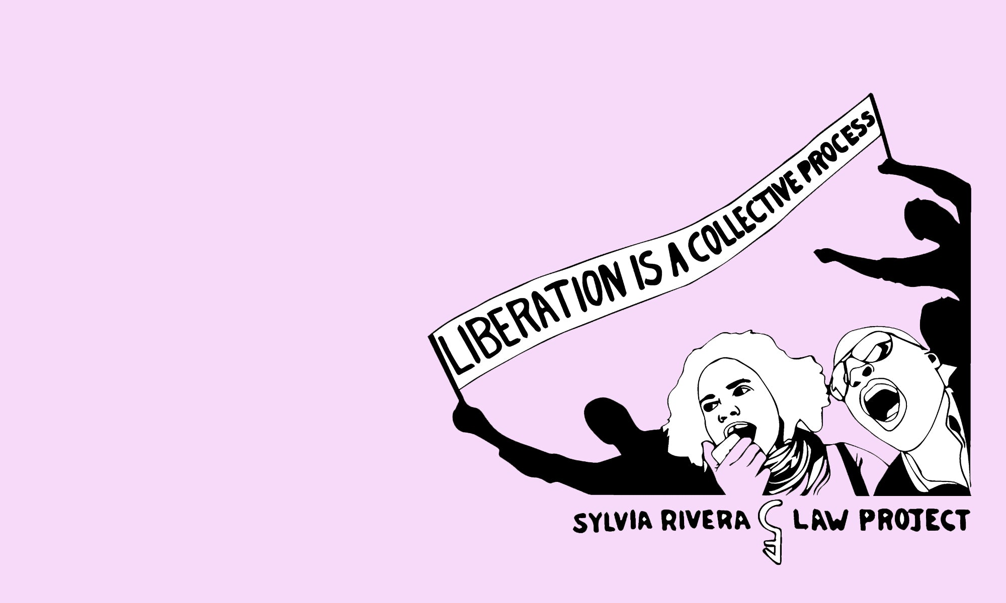 Sylvia Rivera Law Project image