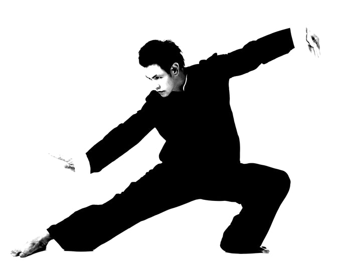 Tai Chi/Qi Gong Program - Tuesdays 8.15pm starting 2nd  of March 2021