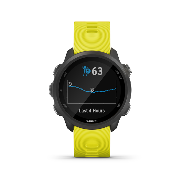 Garmin Forerunner 245 Smart Watch (English Version - Asian Spec, Maps Downloadable) - Hashtechguy
