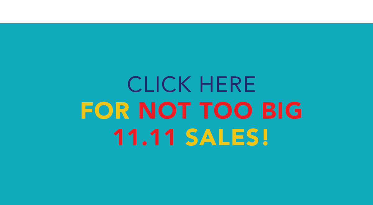 11.11 SALE and PROMOTION AT NOTTOOBIG