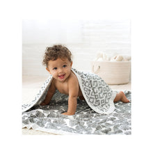 Load image into Gallery viewer, [Aden + Anais] Bamboo Dream Blanket - In Motion Wedges