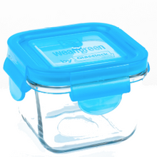 Load image into Gallery viewer, [Weangreen] Snack Cube Garden 4 Set (Assorted) - Not Too Big (Blue)