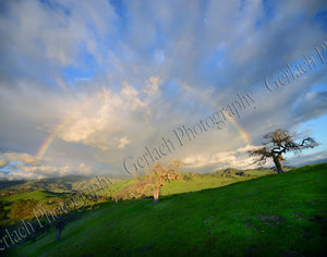 Santa Ynez Valley Rainbow