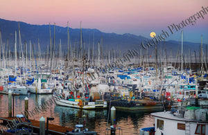 Harbor Harvest Moon