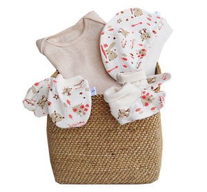 Zuzu The Koala Hamper, Cream - inkahaani