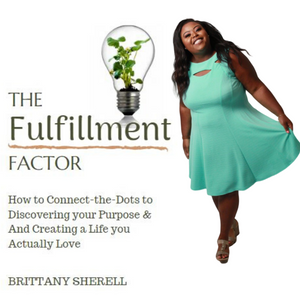 The Fulfillment Factor Book + Coaching Call Bundle