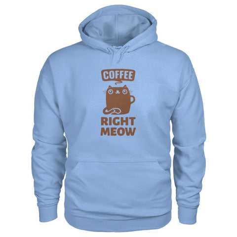 Coffee Right Meow Hoodie - Light Blue / S - Hoodies