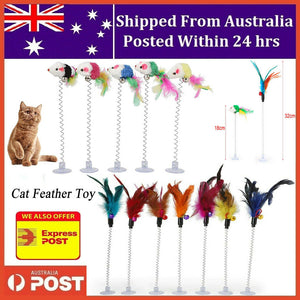Cat Spring Mouse Feather Play Toy Teaser Bell Wand Interactive Kitten Pet Stick