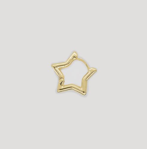 Star Shape earring