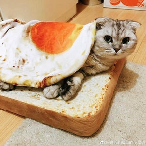 Toast Cat Bed and Poached Egg Blanket Combo