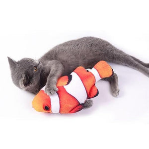 Limited Edition Fish Kicker Toy