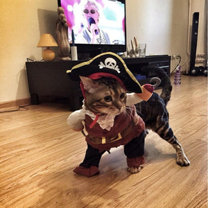 Funny Pirate Cat Costume