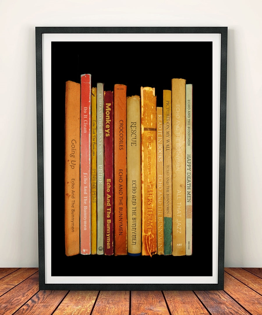 Echo And The Bunnymen 'Crocodiles' Album Penguin Book Spine Print