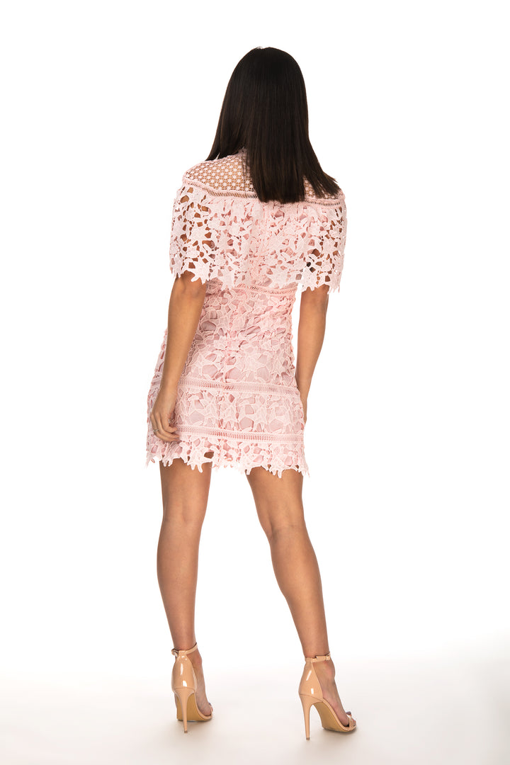 Robin High Neck Crochet Detail Mini Dress