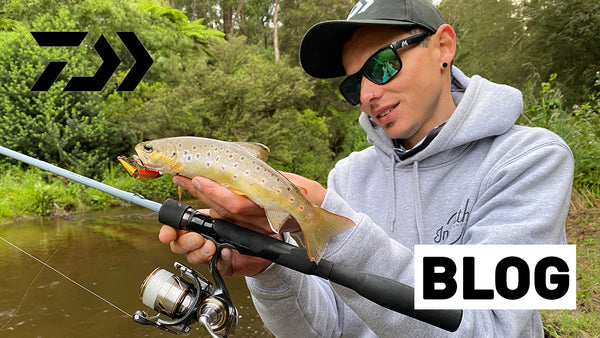 How to Catch Stream Trout