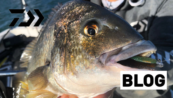 How to Catch Bream on Deep Plastics