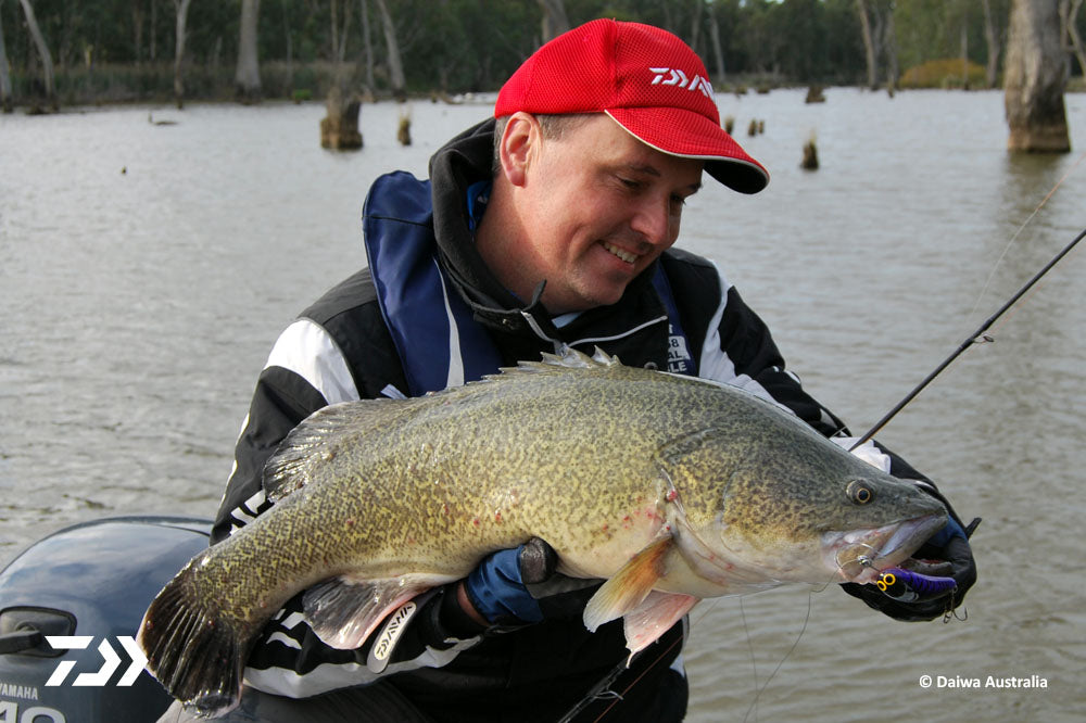 Persistence for Murray Cod 02