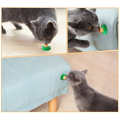 Image of Healthy Cat Snacks Catnip Sugar Candy Licking Toy - fobglobal