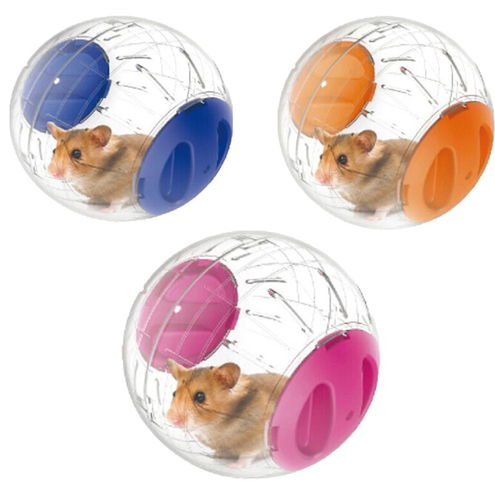 Small Pet Exercise Toy