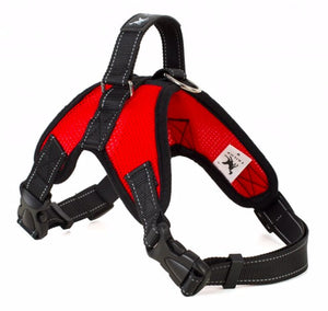 Walking Pet Harness Vest Adjustable Padded