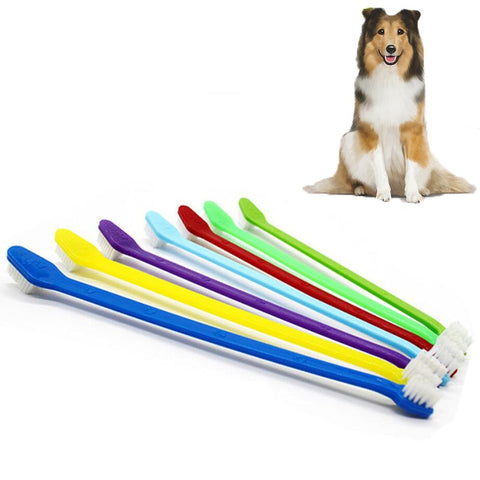 22cm Long Handle Toothbrush For Pet Dog or Cat