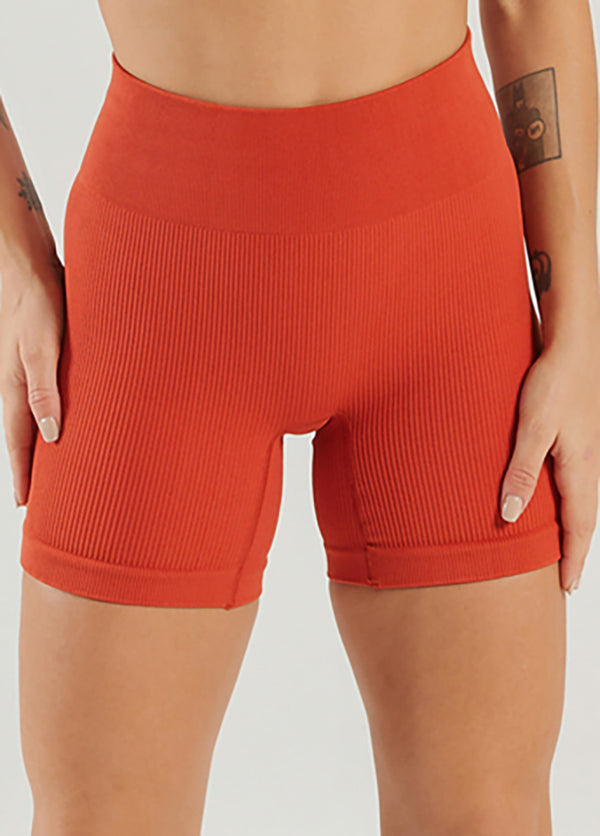 Solid Color High Waist Yoga Shorts