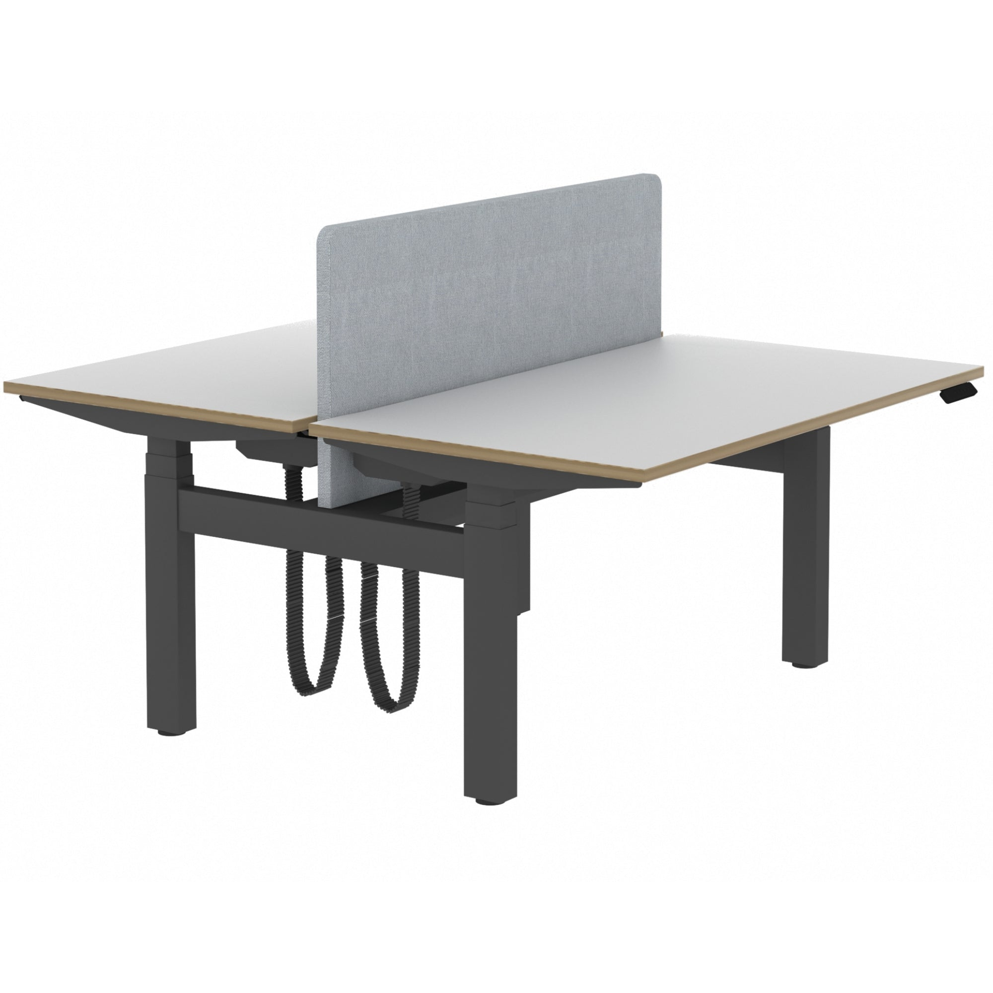 Elite Electric Office Sit Stand Desk Dual Black Base Grey Plywood