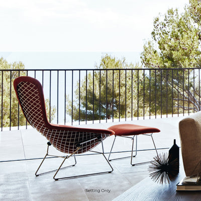 Knoll Bertoia Bird Lounge Chair