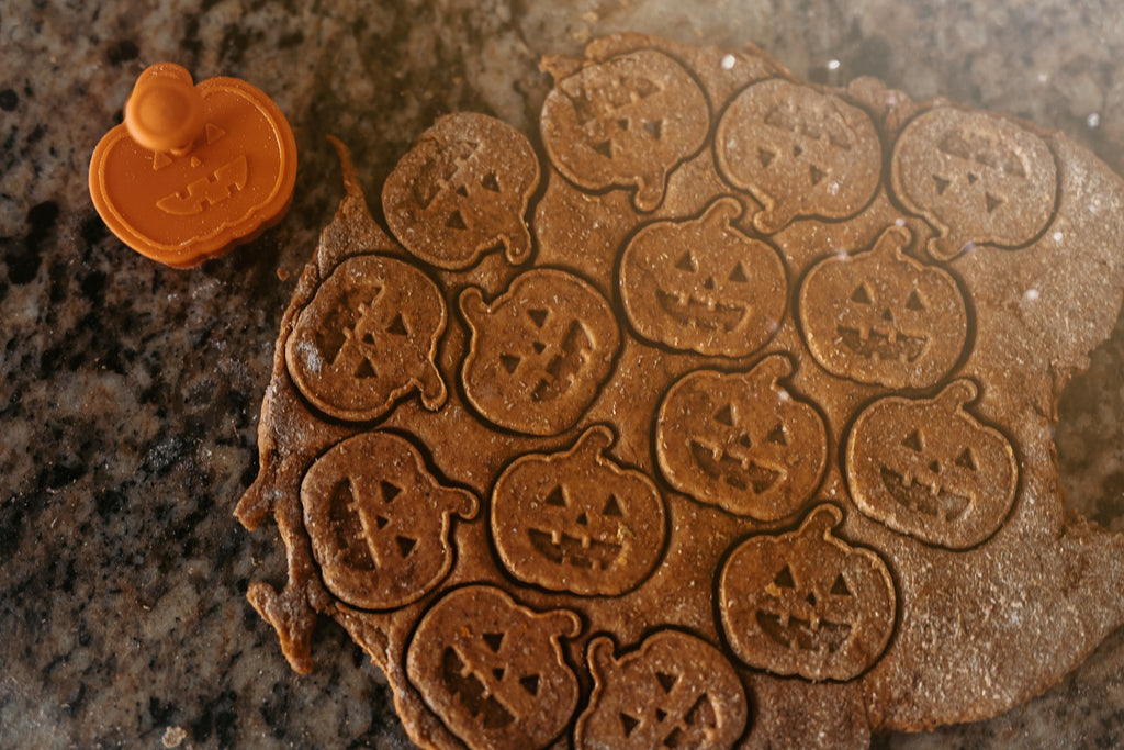 Pumpkin Berry Spice Dog Biscuits