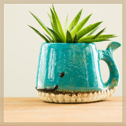 Whale Plant Pot - Envy Paint and Design