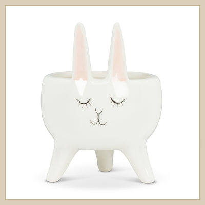 Rabbit Planter - Envy Paint and Design