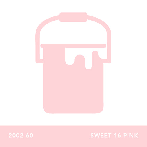 2002-60 Sweet 16 Pink - Envy Paint and Design