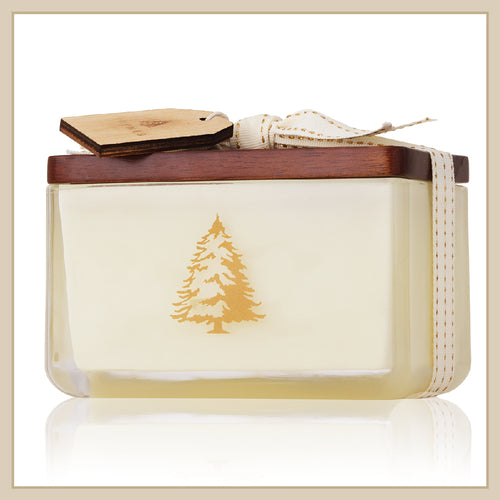 Thymes Frasier Fir Northwoods Poured 2-Wick Glass Candle - Envy Paint and Design