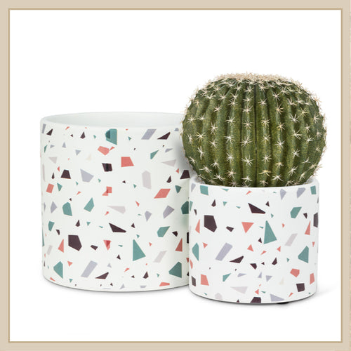 Terrazzo Pot - Envy Paint and Design