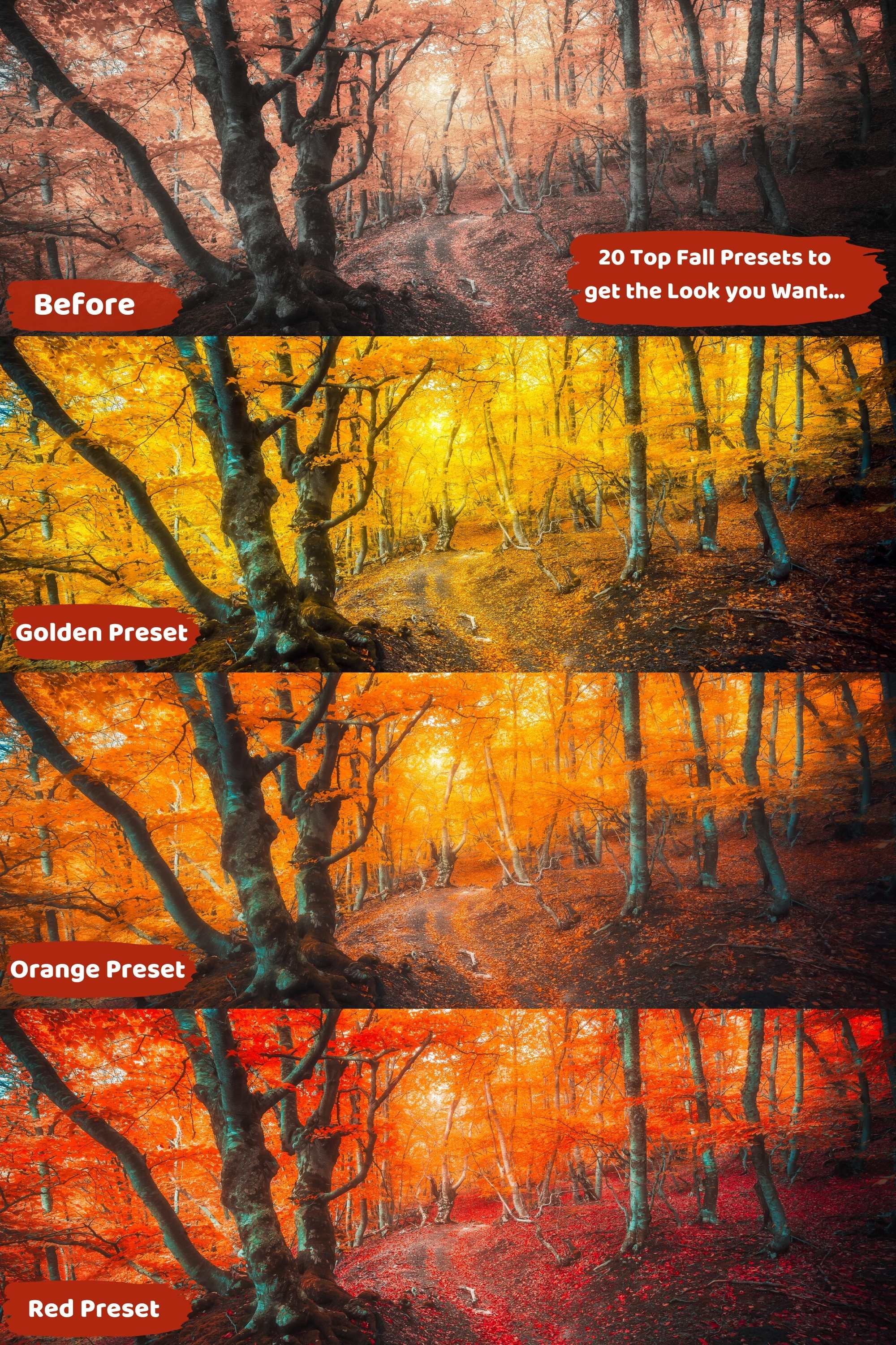 Fall Lightroom Presets Before and After Comparison