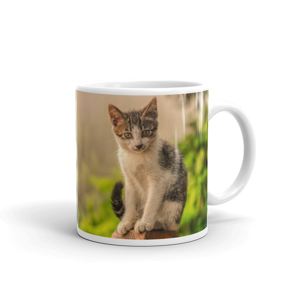 Mug - The Cat Collection - The Mysterious Look