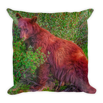 Decorative Throw Pillows - Wildlife Collection - The Big Brown Bear